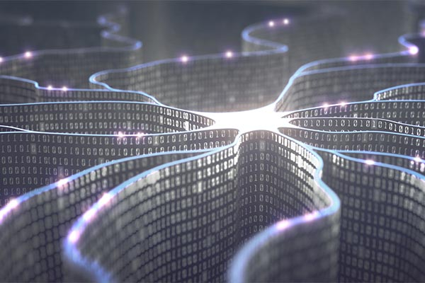 neuron and binary code