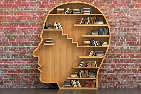 Bookcase shaped like head