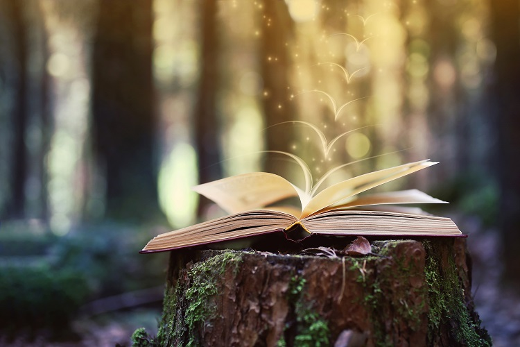 book in forest
