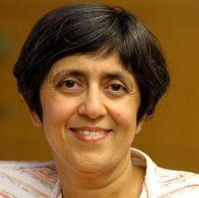 Sarita Adve, University of Illinois professor