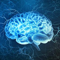 Join IEEE Brain